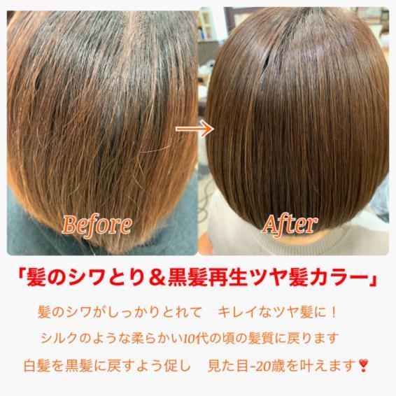 白髪を染めるたびに黒髪に再生する⁉黒髪再生カラーの登場です!